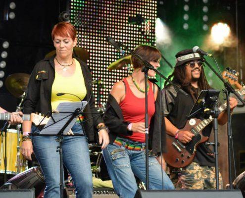 rienne-tribute-festival-galerie-2015-1